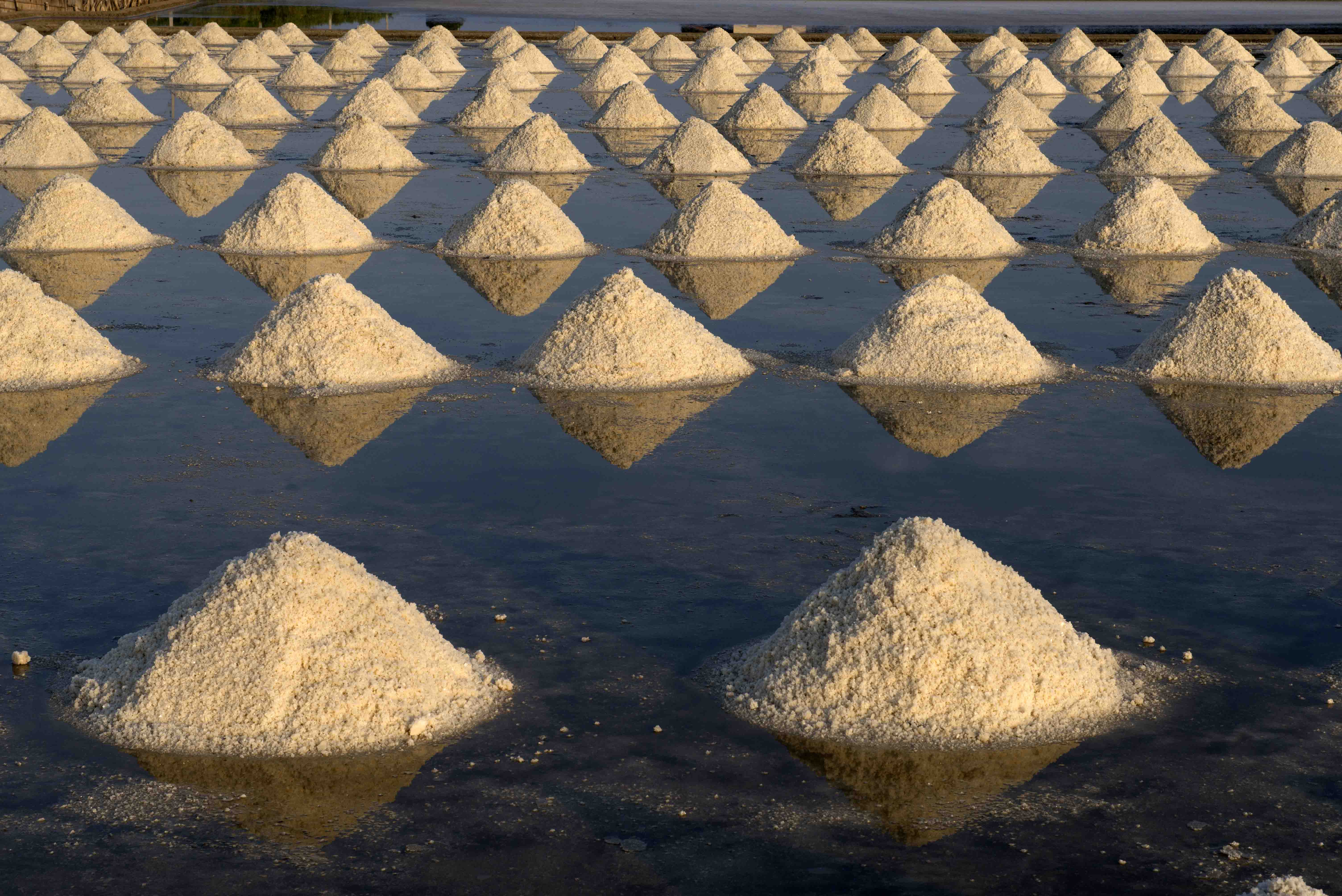 Tropical saltworks