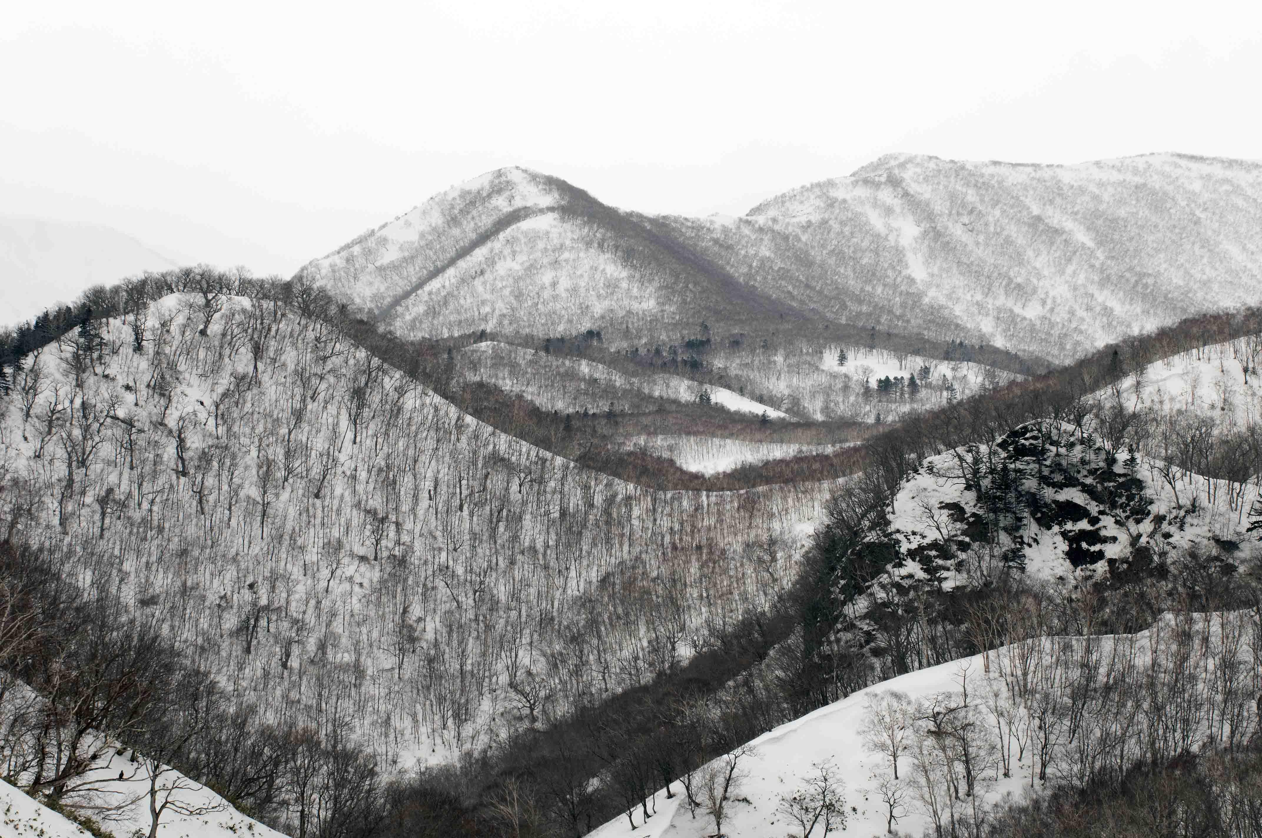 Hokkaido II