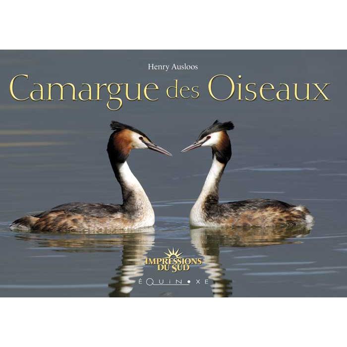 CAMARGUE DES OISEAUX